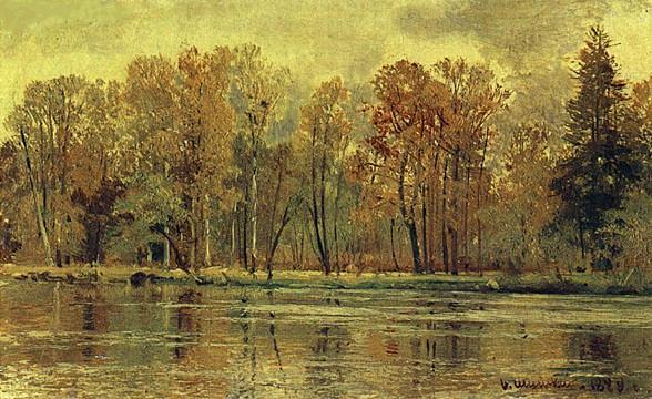 Осенний лес с лучами солнца картинки