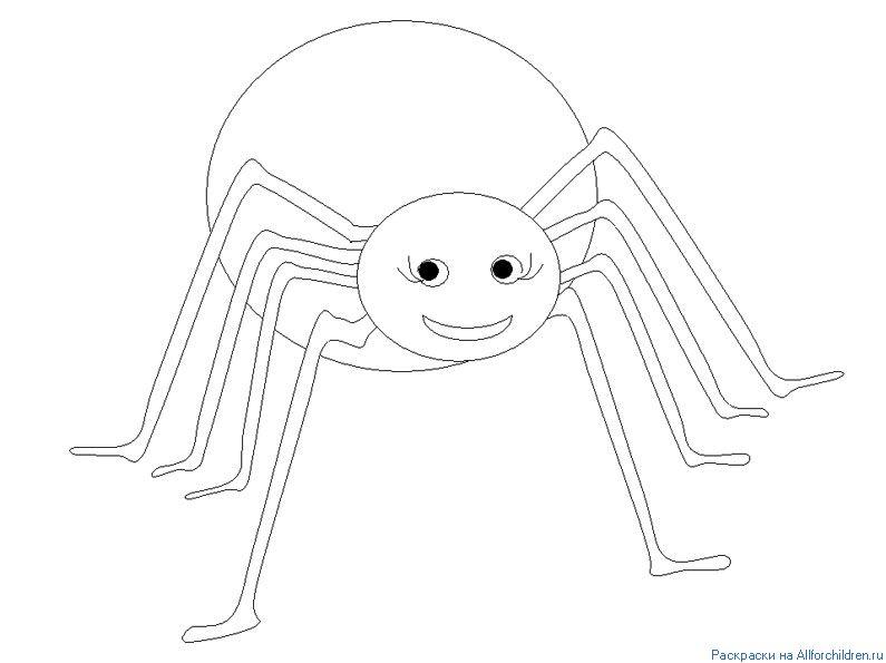 Улыбающийся паучок