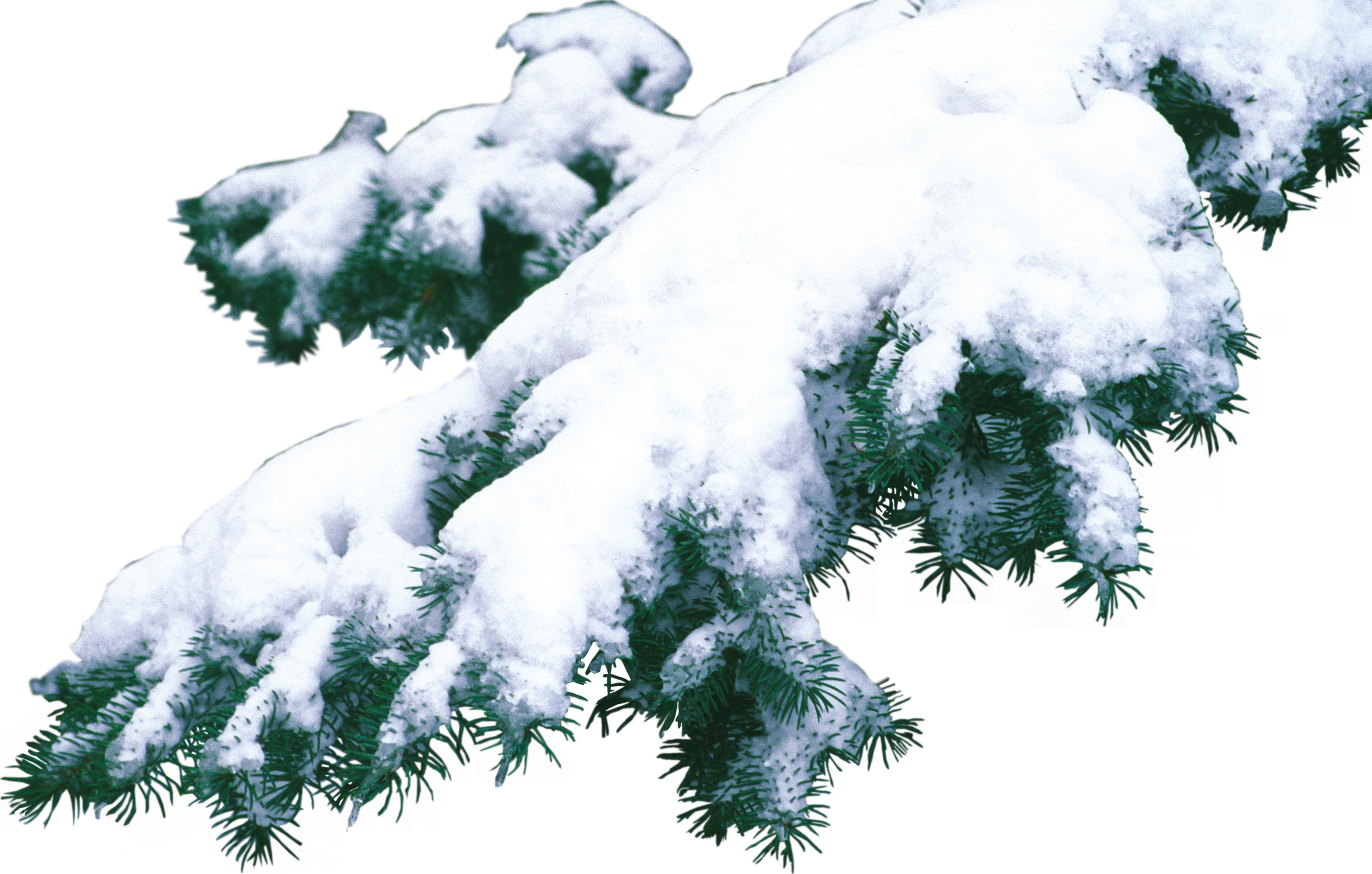 Картинки на прозрачном фоне снег 6