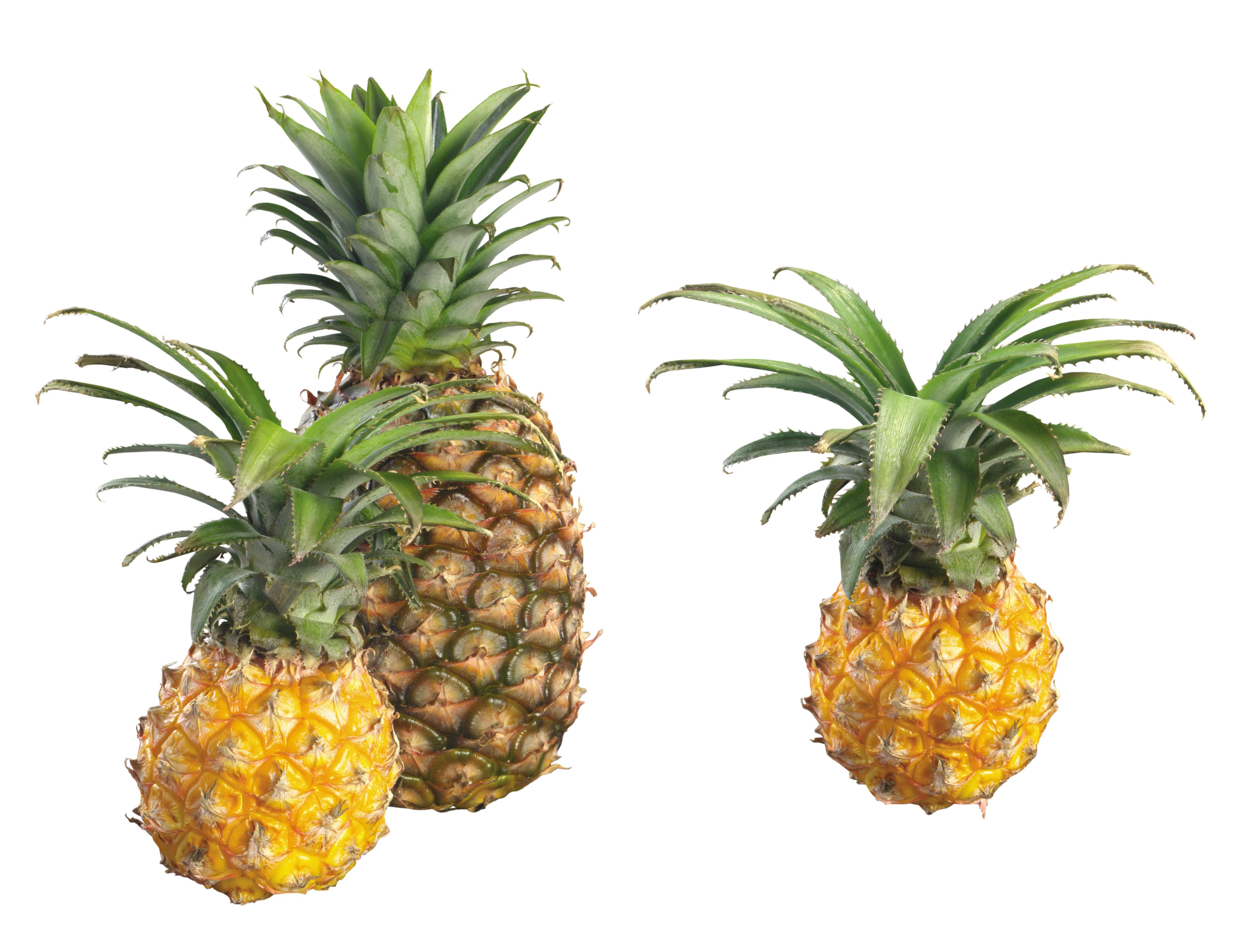 Один большой ананас и два маленьких