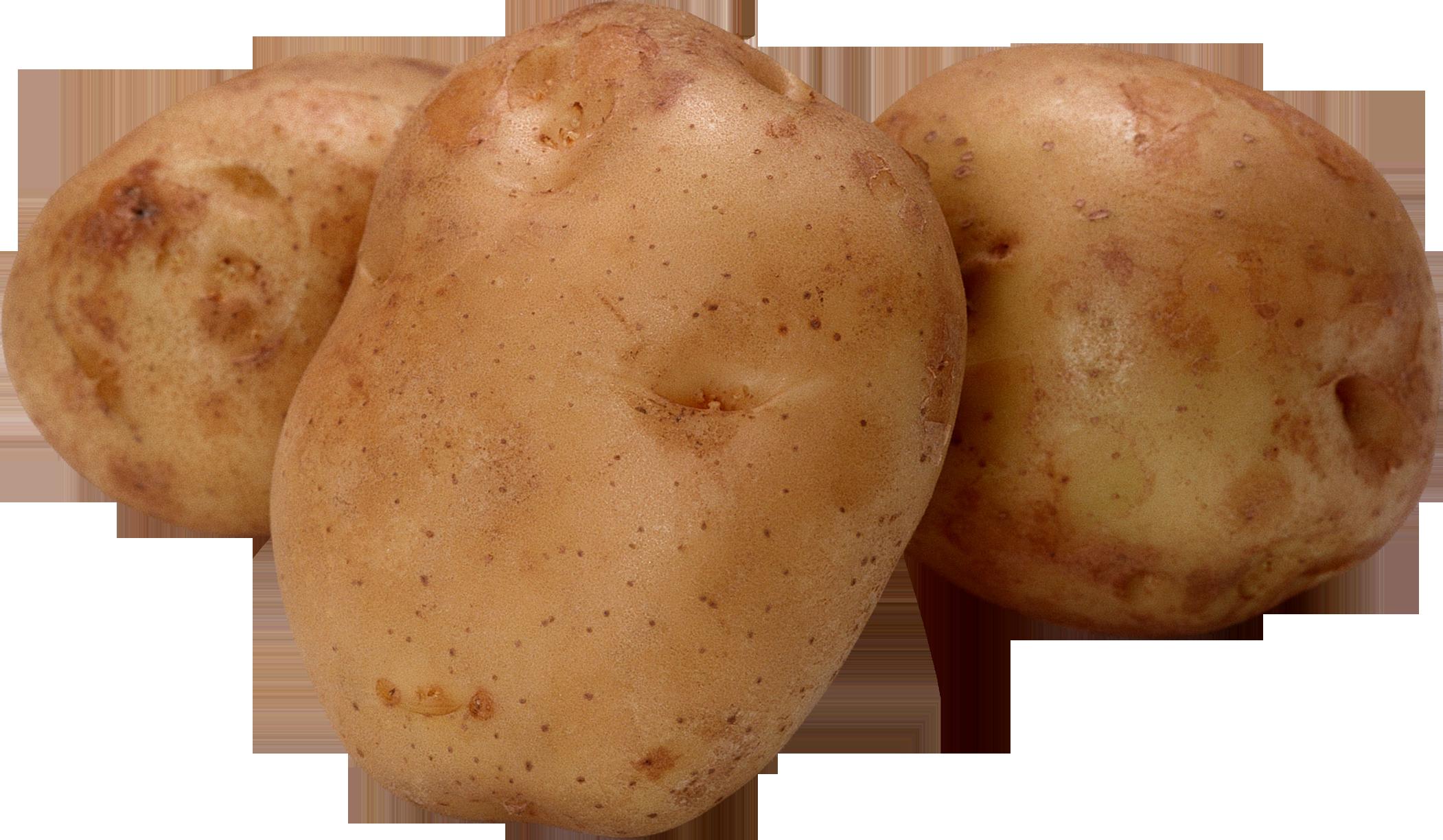 Три клубня картошки