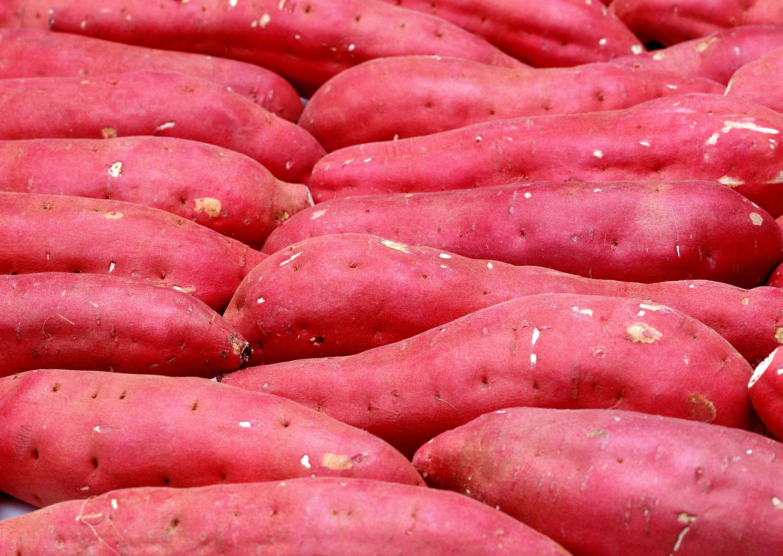 Картофель с красными клубнями