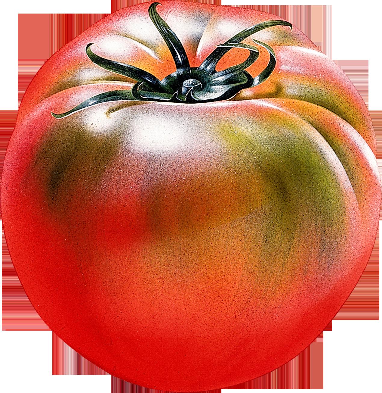 Красный помидор с зелеными разводами