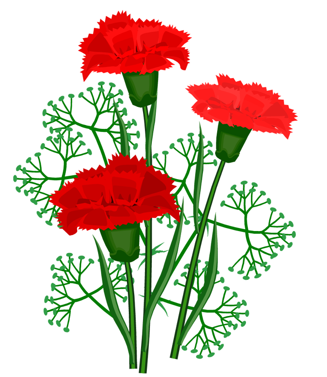 Картинки цветы гвоздики с анимацией