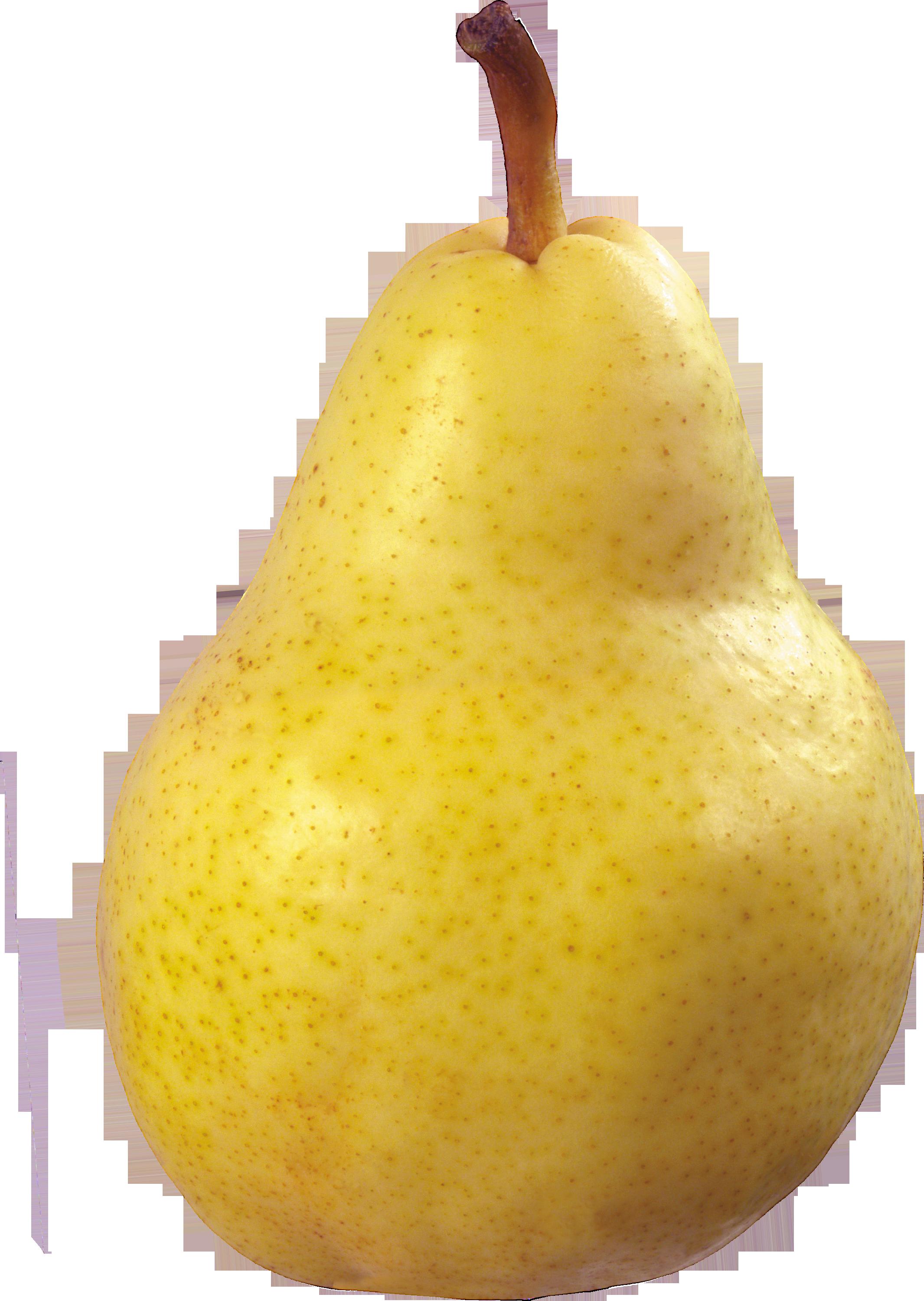 Груша фруктова в картинках